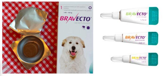 Tabletten für hunde gegen zecken